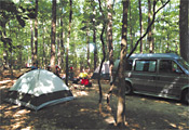 Tentsite at Winding River Campground